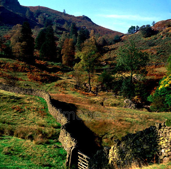 FellGrasmere 