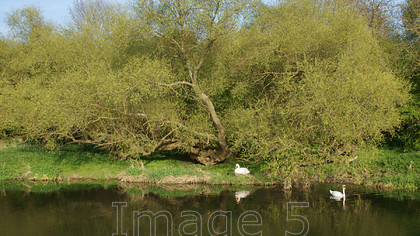 oneonthewater1 