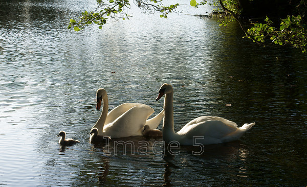 outinfront 